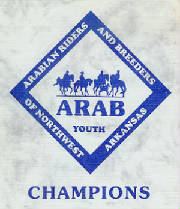 arab_youth_logo.jpg
